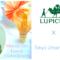 Event 27 August – Matcha Tea Lesson at Lupicia, Jiyugaoka