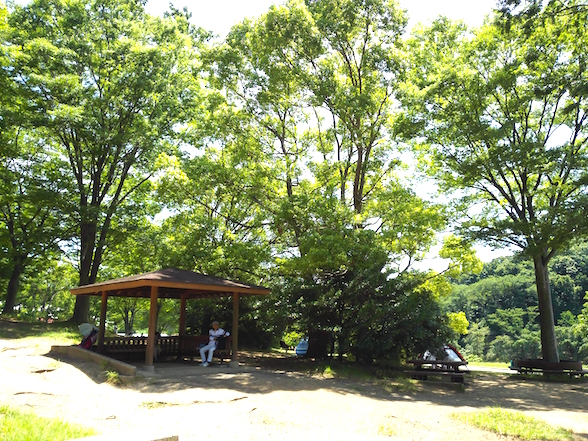 Beautiful little picnic hut under the trees