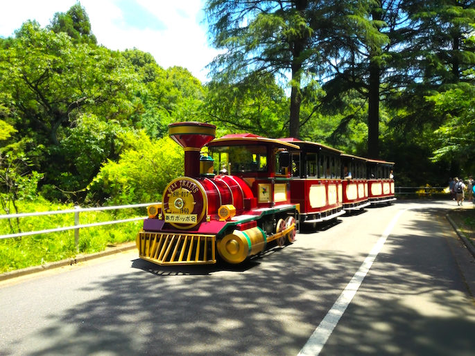 Big train that goes around the park