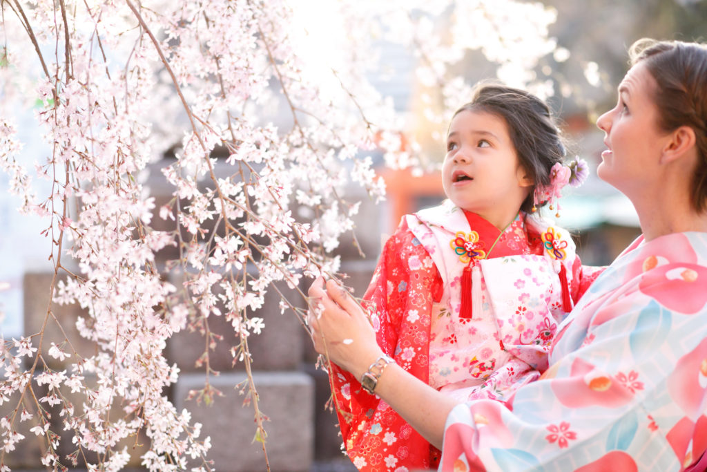 Kyoto Guide Fushimi Inari with toddler and cherry blossoms