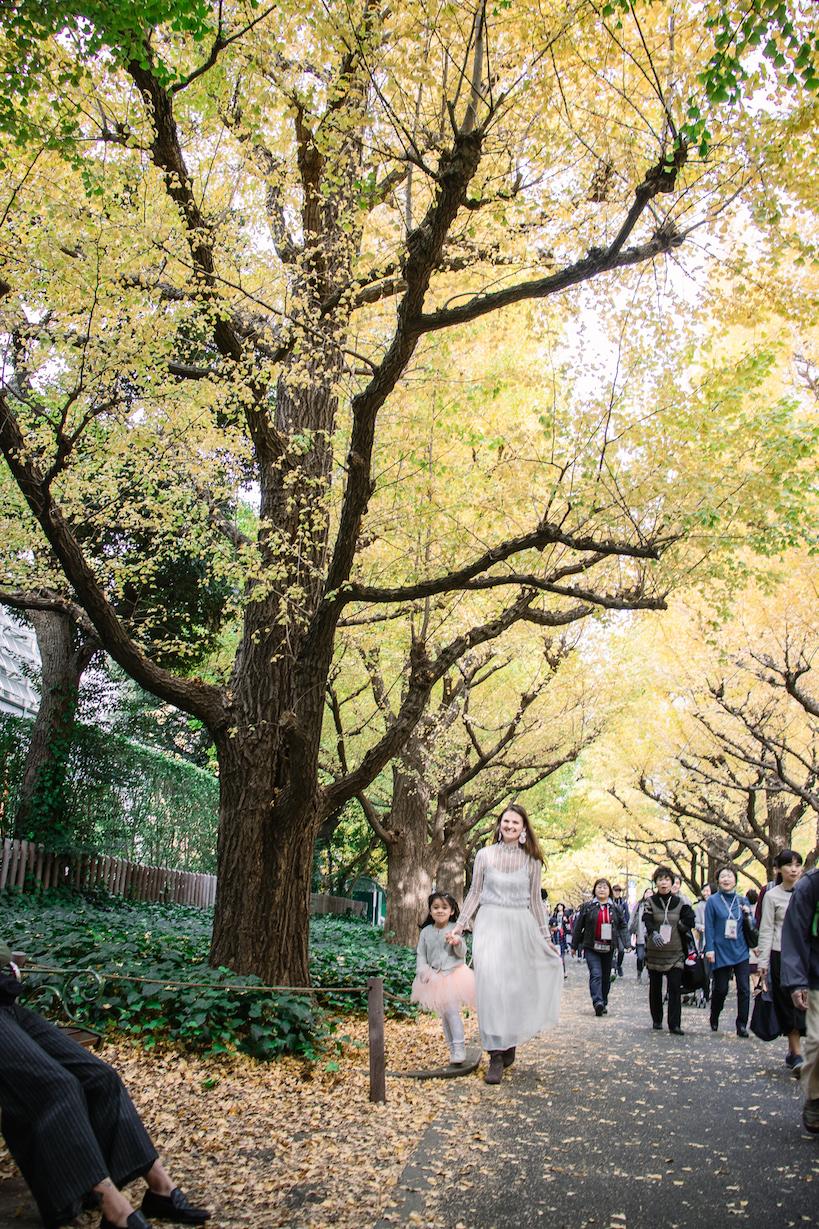 Tokyo Icho Namiki Ginkgo Tree Tunnel autumn leaves