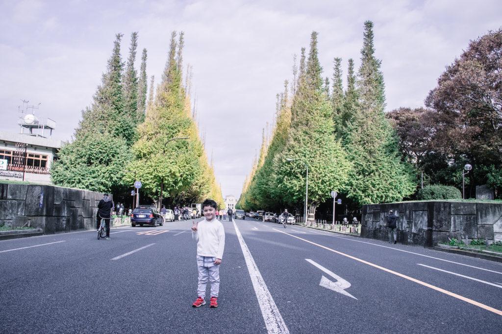 Tokyo Icho Namiki Ginkgo Tree Tunnel with kids