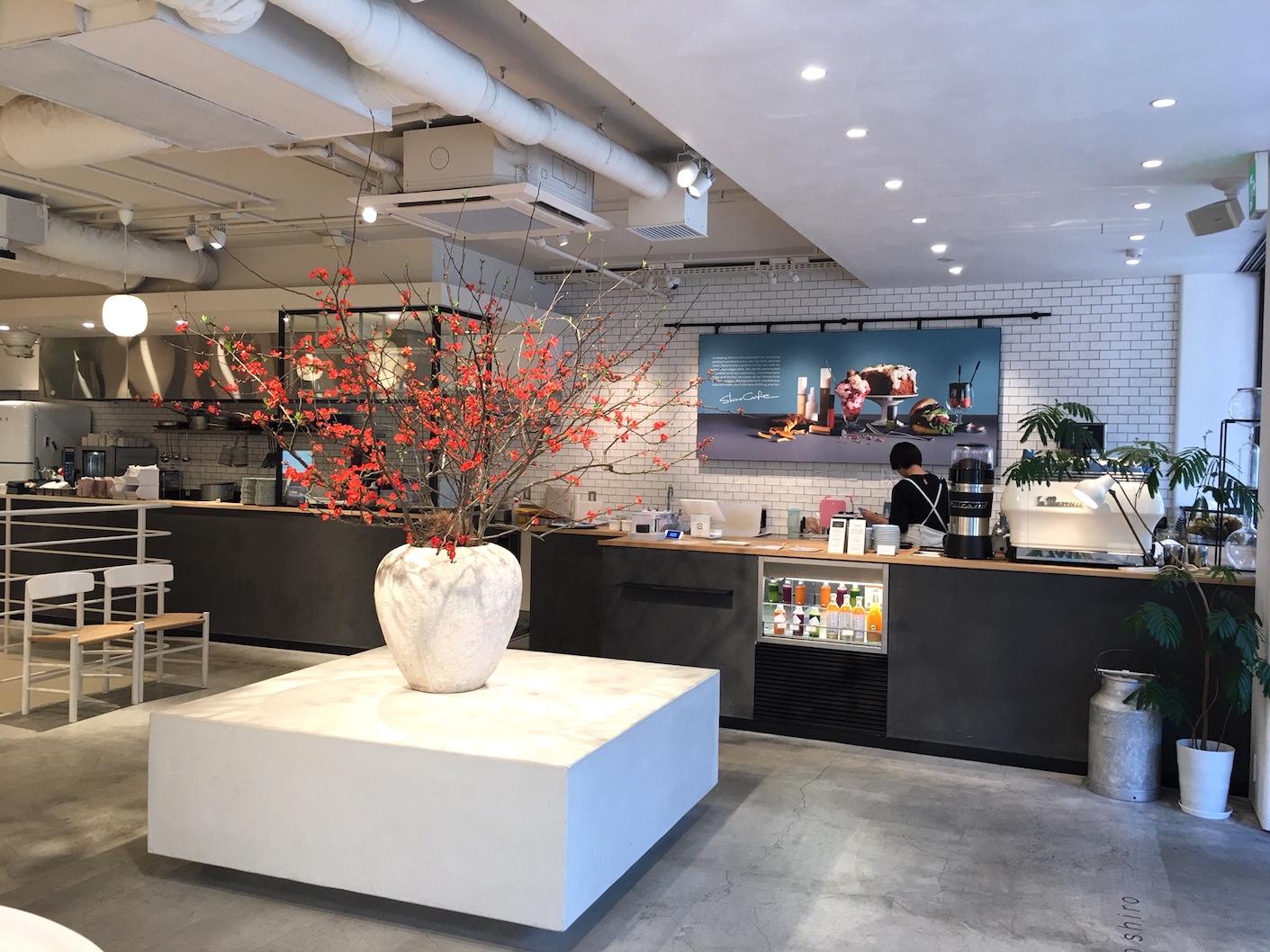 Jiyugaoka Shiro Vegan cafe interior