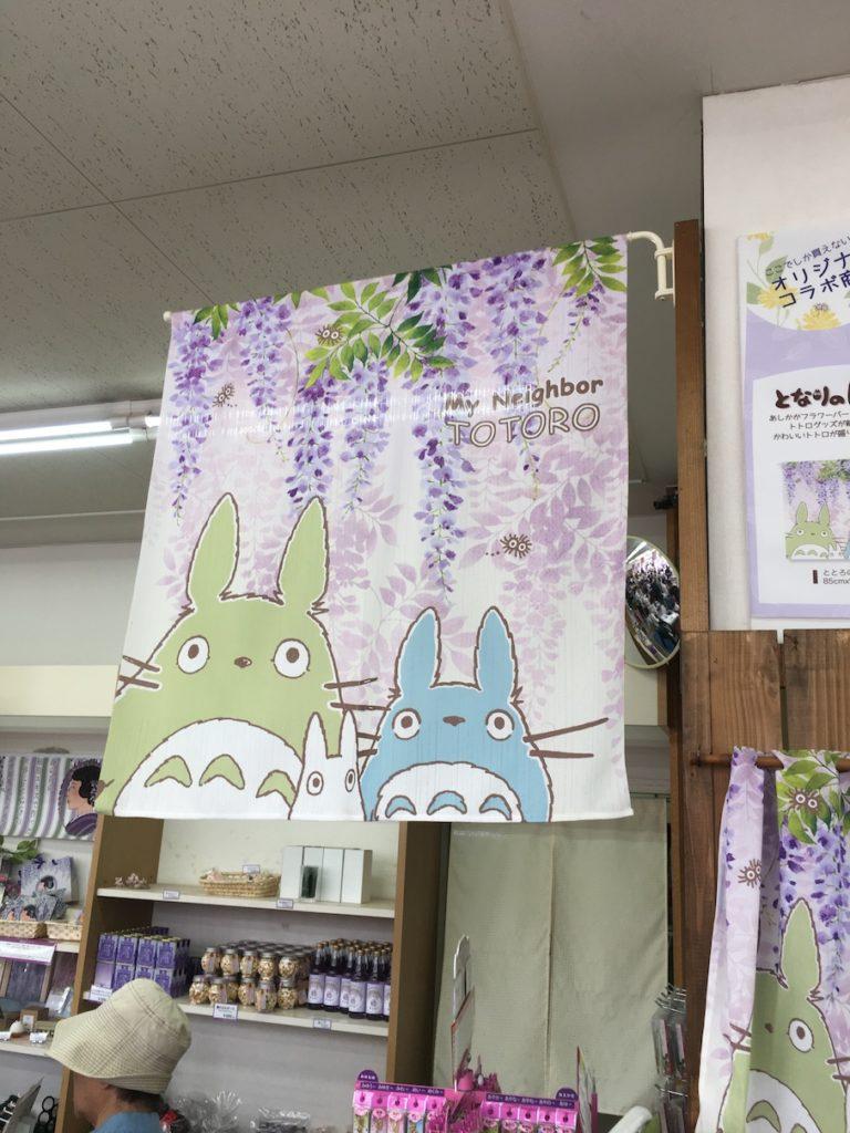 Ashikaga Flower Park purple wisteria Totoro